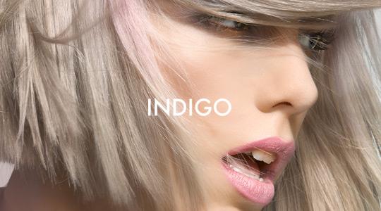 Vídeo promocional Indigo